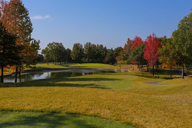 Image of a Beautiful Fall Golf Course